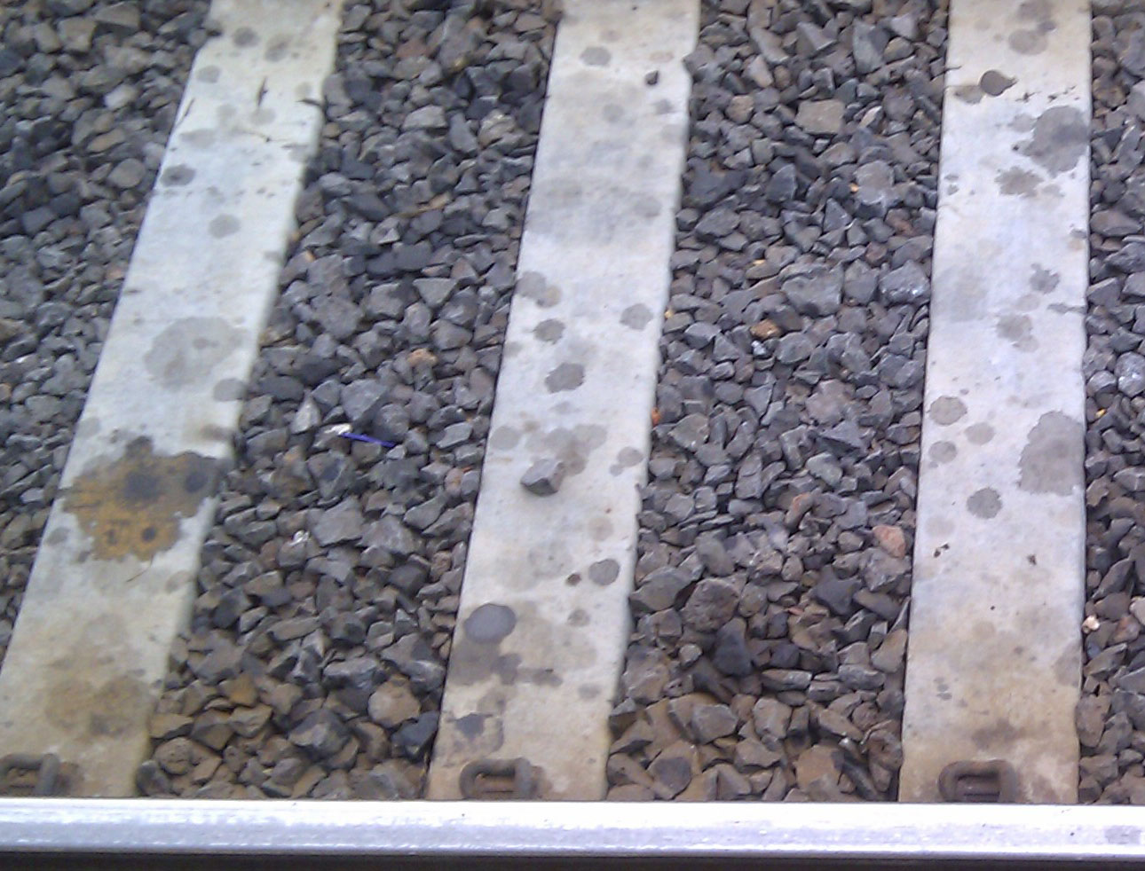 Concrete sleepers after 3 months!